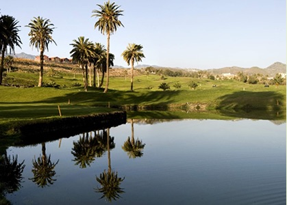 El Cortijo Golf: lake and palm trees